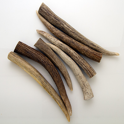 Deer Antler 1 lb/Pack Pen Blanks